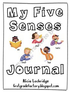 my five senses lesson plans for kindergarten
