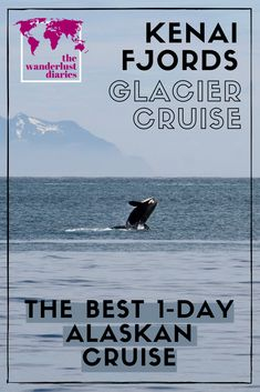 If you only have 1 day to spend in Seward, Alaska, you should take this 7.5 hour cruise! Sail through Kenai Fjords National Park spotting whales, seals, puffins, and sea otters! Not to mention the floating chunks of ice and delicious on board lunch buffet! #Alaskancruise #sewardalaska #summerinalaska #kenaifjordsnationalpark