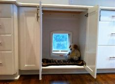 Doggy door ideas door hidden in cabinet goes out to dog run eclectic kitchen diy doggy .