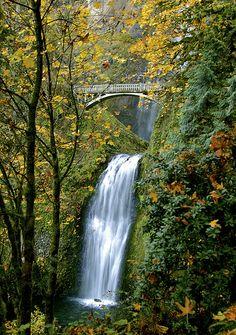 Autumn at Columbia River Gorge Oregon USA