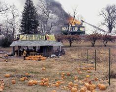 "Joel Sternfeld. ""American Prospects"". 1978. McLean, VA, USA."