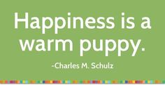 positive quotes, Happiness is a warm puppy