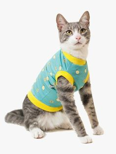 A Camiseta para Gato - Tropicália Lemonade da Cacau Dress Pet é uma roupa com estampa tropical de limões sicilianos que vai deixar seu gato ainda mais refrescado na moda da limonada!