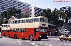 Hong Kong buses, March 1982 (22)