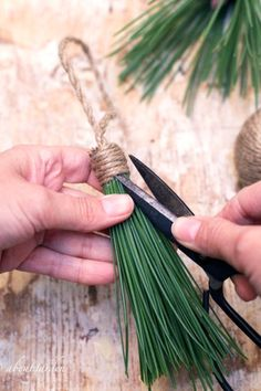 DIY: tassels pine needles Use all .- DIY: Quasten Tannennadeln Verwenden Sie alle Nadeln aus dem Baum… DIY: tassels pine needles Use all needles from the tree or cu … - Rustic Christmas, Winter Christmas, All Things Christmas, Christmas Holidays, Christmas Wreaths, Christmas Ornaments, Advent Wreaths, Christmas Tables, Nordic Christmas