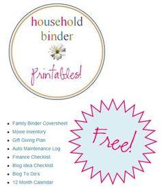 Little Muon: Household Binder Challenge