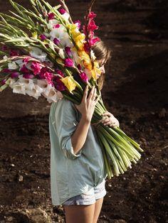 Beautiful Images, Beautiful Flowers, Wild Flower Arrangements, Gladiolus Flower, Spring Sign, Flower Farm, Flower Power, Garden Plants, Wild Flowers