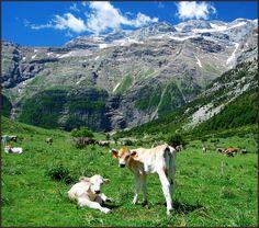 National Park Ordesa y Monte Perdido, Huesca, Spain