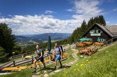 Die hundefreundliche Tonnerhütte in der Wanderregion Mühlen Steiermark Freundlich, Hotels, Camping, Golf Courses, Poster, Mountains, Nature, Travel, Pets