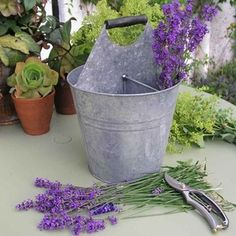 Antique Grey Herb Bucket — The Worm that Turned #vintageinspired