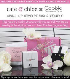 381d2685079e Free C C VIP subscription jewelry box   coobie lingerie bag