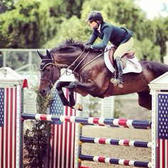 Equestrian: Jumping ~ I want this horse so badly