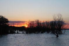 Sunset on the Lake Trasimeno in Umbria. #italy #italy #italia #umbria #trasimeno #lake #järvi #järvimaisema #lago #trasimeno_lake #trasimenoland #volgoumbria #igersumbria #ig_umbria #trasimenolake #sunset #auringonlasku #water #vesi #acqua #agriturismocasegraziani #agriturismomalagronda by casegraziani_malagronda