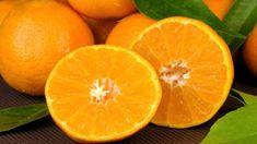 3 domácí recepty na 3 vánoční pomerančové marmelády. Kde se vzala marmeláda z pomerančů. Jak snadno a rychle vykrájet z pomeranče filátka. Lose Weight, Weight Loss, Week Diet, Coconut Water, Natural Health, Dessert, Orange, Vegetables, Food