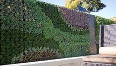 Urban Landscape - Living Walls.