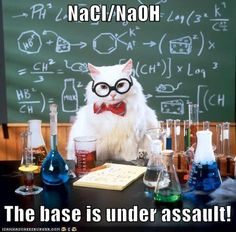 Science cat is funny.