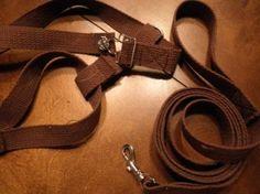 DIY dog harness and leash!