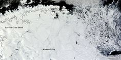 Sea ice is pushing farther north than usual this year in parts of Antarctica, as shown in this Feb. 22 satellite image from NASA's Terra satellite. Snow And Ice, Fire And Ice, Paris Climate, Sea Ice, Our Planet Earth, Strong Wind, Image Of The Day, Chicago Tribune, The Washington Post