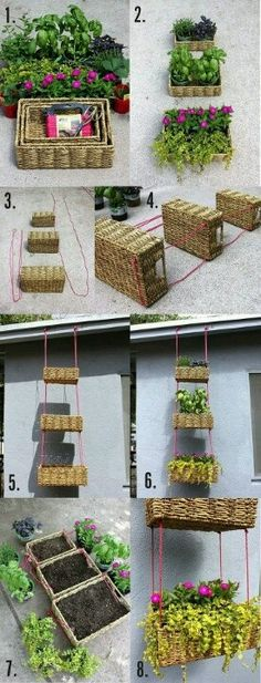 going to try this next year with herbs!!