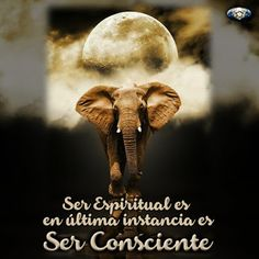Presente Consciente: Ser CONSCIENTE