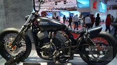 Harley Davidson Street 750 Pictures