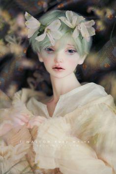 Waseon Rosy White