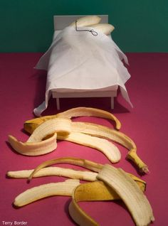 """""""Bananas-in-bed"""" - Objects Come to Life With Photographer's 'Bent' Sense of Humor Photo: Terry Border Daily Funny, The Funny, Funny Happy, Humor Grafico, Everyday Objects, Everyday Items, Secret Life, Just For Laughs, Laugh Out Loud"""