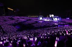 Concert Crowd, Pops Concert, Anime Ninja, Girl Sday, Famous Singers, Kpop, Secret Life, Bts Video, After Dark