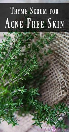 DIY Masque : Description Thyme Serum for Acne Free Skin – Thyme is known to be just as effective as benzoyl peroxide for fighting acne and clearing the skin without the side effects. Skin Care Regimen, Skin Care Tips, Skin Tips, Diy Masque, Coconut Oil For Acne, Natural Acne Remedies, Herbal Remedies, Acne Scar Removal, Acne Free