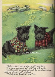 SCOTTISH TERRIER PUPPIES SCOTTIE DOG VINTAGE Art Print 1938 WEARING PLAID COATS