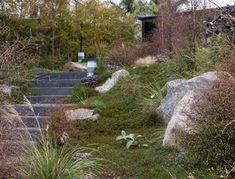 Xanthe White | The Garden Design Society of New Zealand