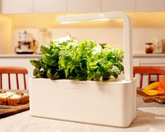 Smart Herb Garden - ...fuelled by 6W of our new-generation eye-friendly LED technology. ...while adding only 3$ to your annual electricity bill.