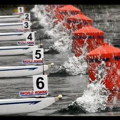 Filippi Boats dominate World Rowing.  just keep rowing, just keep rowing... #rowperfect