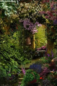 It would be a dream to have your own secret garden