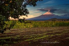 Sunrise with the volcano and flower field by Cristobal Garciaferro Rubio on 500px