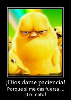 Gott gib mir Geduld - Funny quotes - Welcome My Crafts Spanish Posters, Spanish Humor, Spanish Quotes, Funny Cute, Hilarious, Mexican Problems, Humor Mexicano, Frases Humor, Laughter