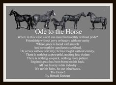 Ode to the Horse  I used to cry to this when I watched 'The Horse Of The Year Show'