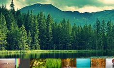 variety wallpaper changer ubuntu