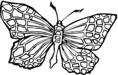 Image result for butterfly printable