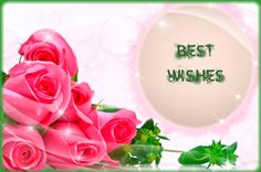 Best wishes Best Wishes For Exam, Exam Wishes, Wish Quotes, Zine, Knowledge, African, Tech, English, Future