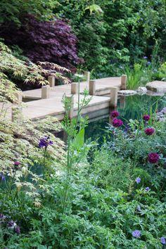 RHS Chelsea Flower Show 2015 - The M&G Garden | Flowerona
