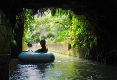 Kauai Backcountry Adventures – One-of-a-Kind Plantation Tubing Adventure
