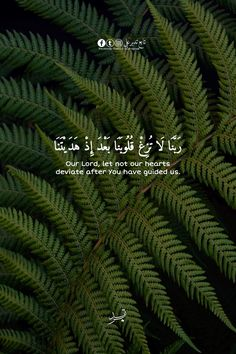 Quran Quotes Love, Quran Quotes Inspirational, Beautiful Islamic Quotes, Beautiful Arabic Words, Hadith Quotes, Muslim Quotes, Religious Quotes, Quran Wallpaper, Islamic Quotes Wallpaper