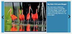 Olá amigos Mult-focos, veremos neste post um slide carousel de posts para Blogger, Como o próprio nome diz é um slide que mostrará todos os seus post(até 100) se assim quizer, caso contrário é só modificar em(var numposts_gal = 100)para a quantidade que desejar.