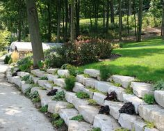 Landscape Design, Pictures, Remodel, Decor and Ideas - page 13 Garden Design Pictures, Architectural Services, Home Landscaping, Flagstone, Houseplants, Evergreen, Outdoor Ideas, Outdoor Decor, Outdoor Gardens
