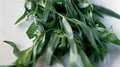 Tarragon - Go for fresh-looking leaves, with no discolouration or wilting.  French tarragon is considered to be the best - its flavour is more subtle than the coarser Russian tarragon. Dried tarragon is also available.  A better substitute for French tarragon is Spanish tarragon (Tagetes lucida), also known as Mexican mint marigold, Mexican tarragon.  The dried plant is burnt as an incense and to repel insects