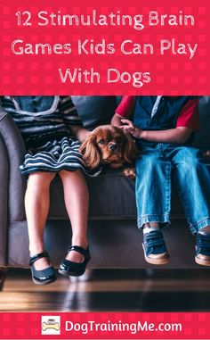 Are you stuck for ideas on what games to play with your dog? These stimulating brain games for dogs are a great way to get the kids involved as well. These games will keep your dog physically and mentally healthy and happy. And the kids too.