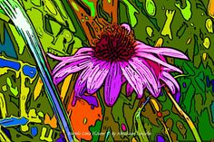 Purple Cone Flower with the artistic treatment.