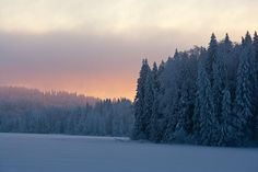 Digital photo collection about Estonian landscapes and species of Northern Europe Beautiful Places, Europe, Mountains, Landscape, Winter, Nature, Travel, Winter Time, Viajes