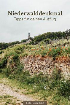 Niederwalddenkmal: Tipps & Highlights für deinen Ausflug nach Rüdesheim - Rhein-Main-Blog Maine, Frankfurt, Parks, Vineyard, Highlights, Country Roads, Blog, Outdoor, Bike Rides